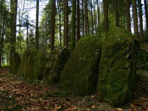Steinreihe im Wald oberhalb von Herferswil